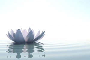 Meditation & Mindfulness with Kate @ Rockland Jewish Family Service | West Nyack | New York | United States