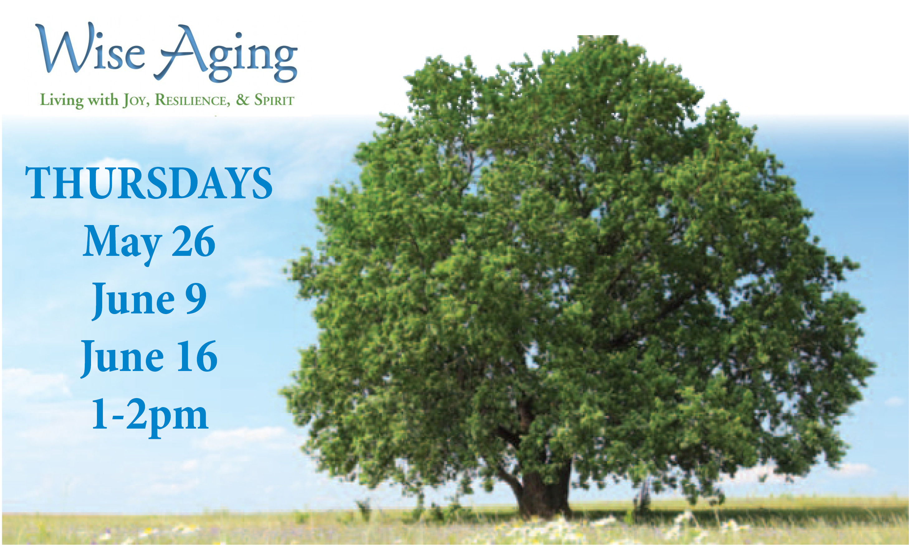 wise aging banner